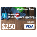 wellness debit card icon